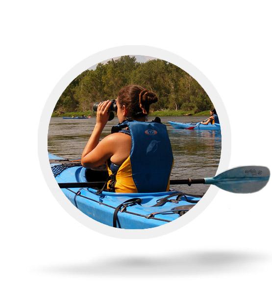 Birdwatching by canoe