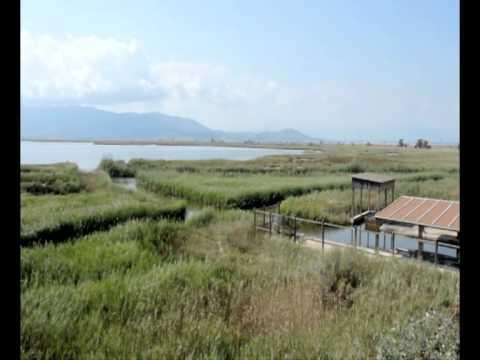 Turisme Terres de l'Ebre - Parc Natural del Delta de l'Ebre