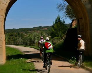 Amb bicicleta pels espais de la Batalla de l'Ebre