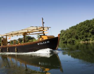 vaixells-motor-barcos