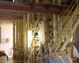 Visita Museu de l'arròs