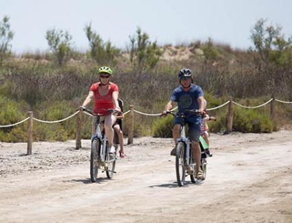 Ruta bicicleta ebike desembocadura Ebre