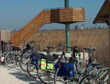Caiac i Bicicleta Desembocadura Ebre Deltaventur