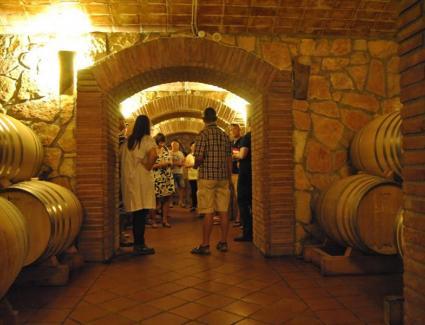 visita-celler-pinol-tast-vins